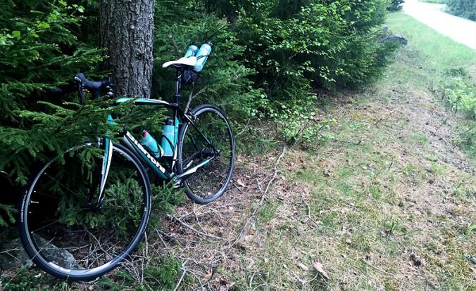 cykel_i_gran